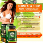 Garcinia Cambogia Free Trial Has Now Become Available