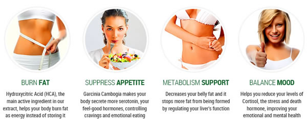 how garcinia cambogia works for weight loss
