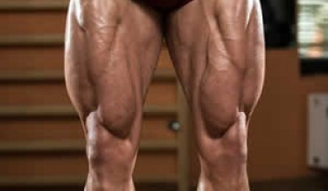 how to get bigger legs fast - best exercises for legs