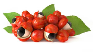Boost your energy levels with Guarana caffeine