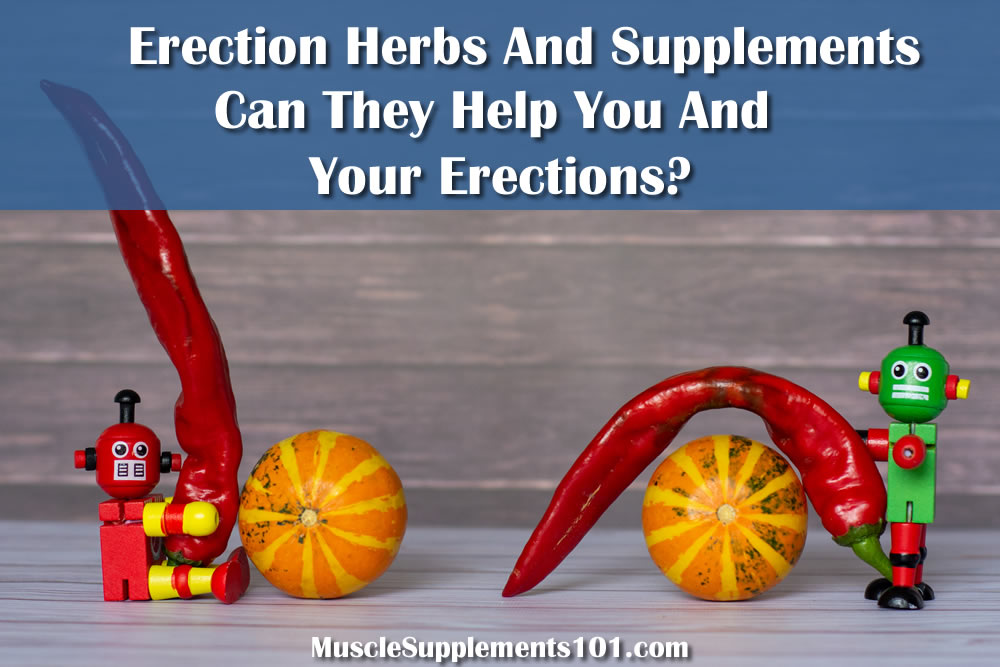 What you must learn about erection herbs and supplements