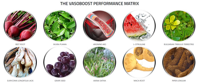 The ingredients in Vasoplexx